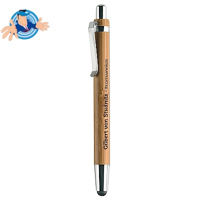 2in1 penna e Touch Screen